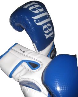 Boxing Glove 16oz  Blue